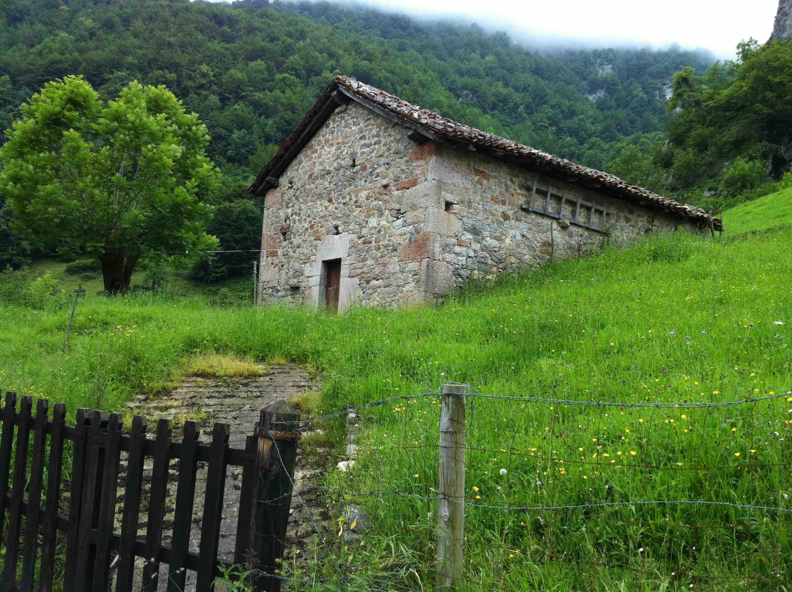 Casa de ganado b