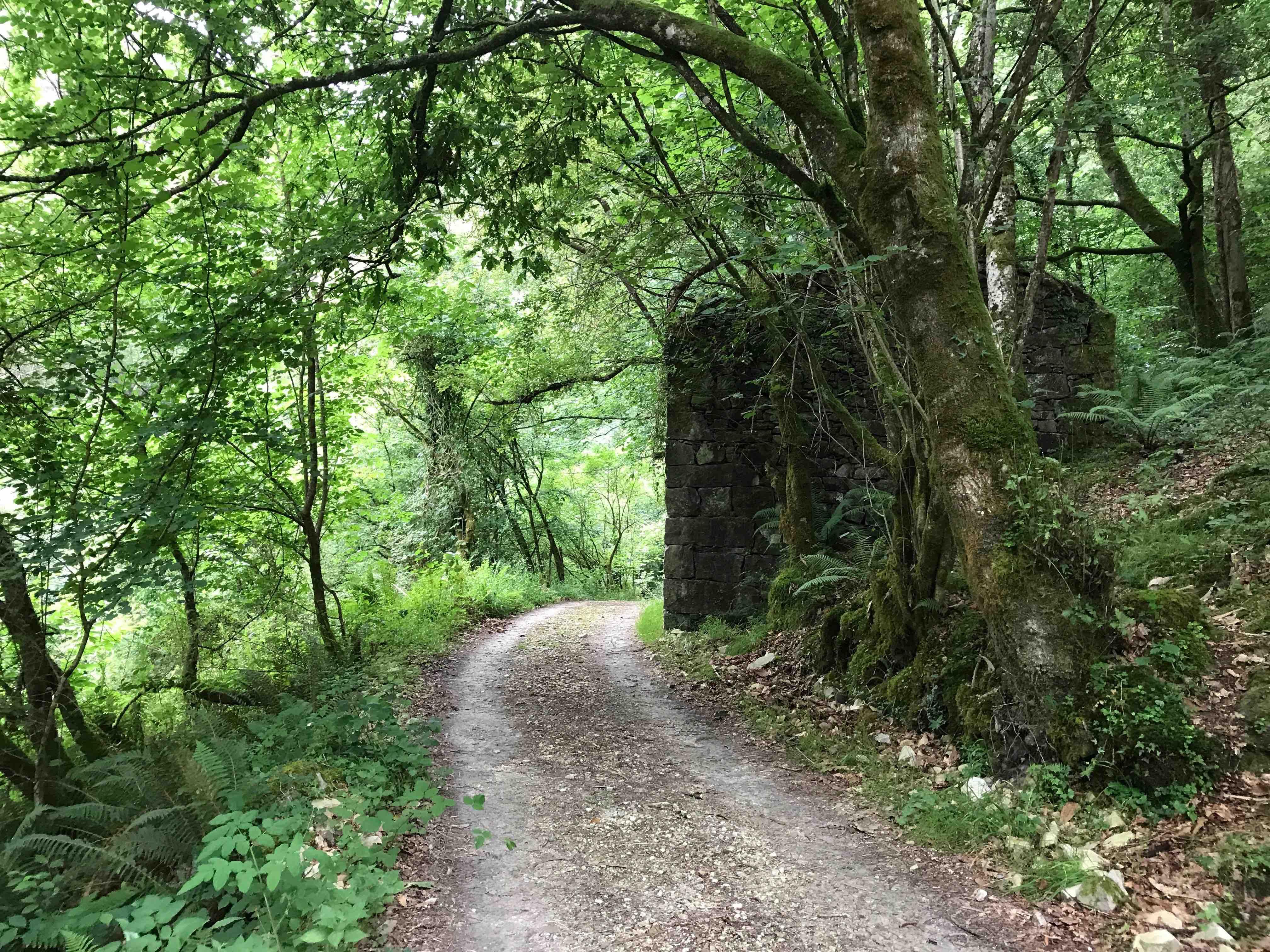 9 Camino y casa
